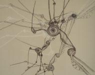 Graphik kunst studie Wald