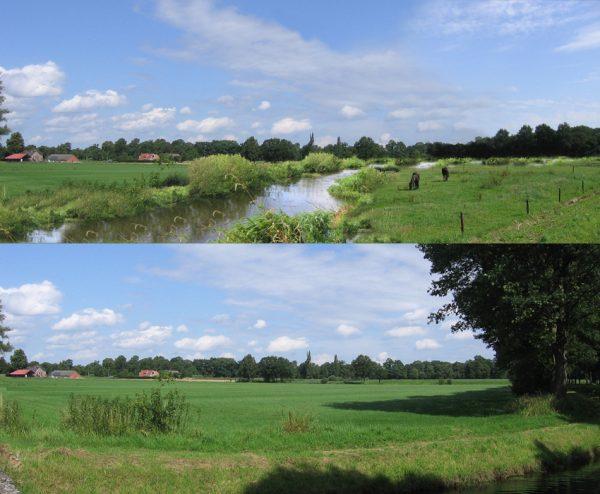 beekherstel; boven regge;waterschap vechtstromen;natte natuur; landschap