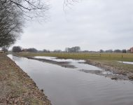 Markgraven brook recovery photo 4