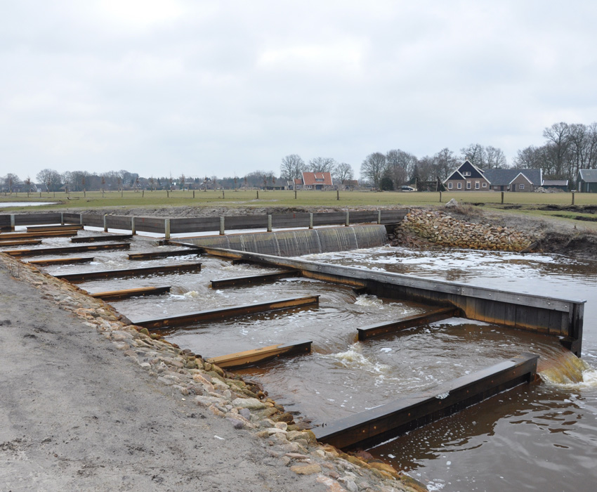 Markgraven brook recovery