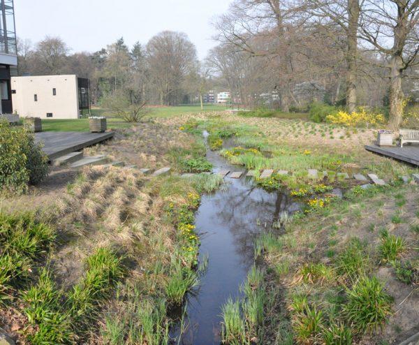 beekpark;roombeek; waterschap vechtstromen; ecologie; natte natuur