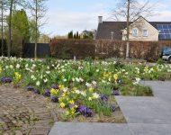 Garden family Stortelder