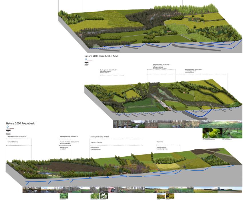 Natura 2000 Hazelbekke, Roezebeek
