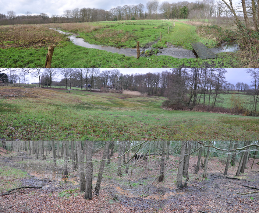 Natura 2000 Mosspring