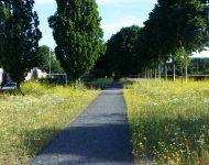 (Nederlands) Heuzelsgoot recreatieve route Groenlo foto 6