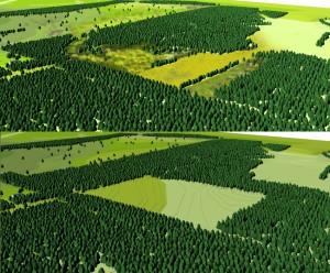 (Nederlands) springendal;jonge ontginningsakkers;natuurgebied;landschapsontwikkeling;staatsbosbeheer; landschapsvisie