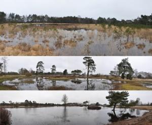 Natura 2000 areas photo 8