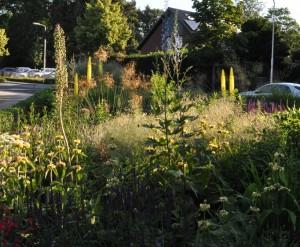 Privat-garden-photo-4